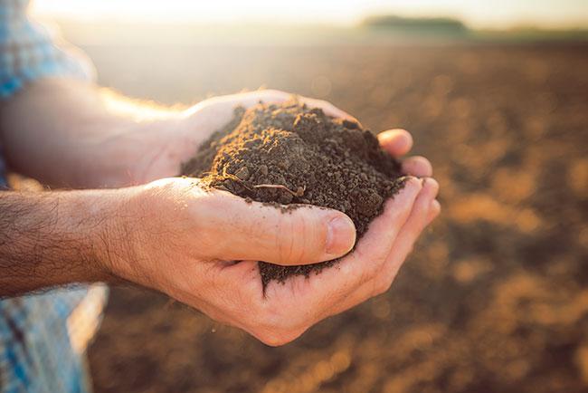 soluciones para los problemas ambientales aprovechamiento de tierras