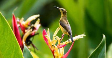áreas naturales protegidas Mexico