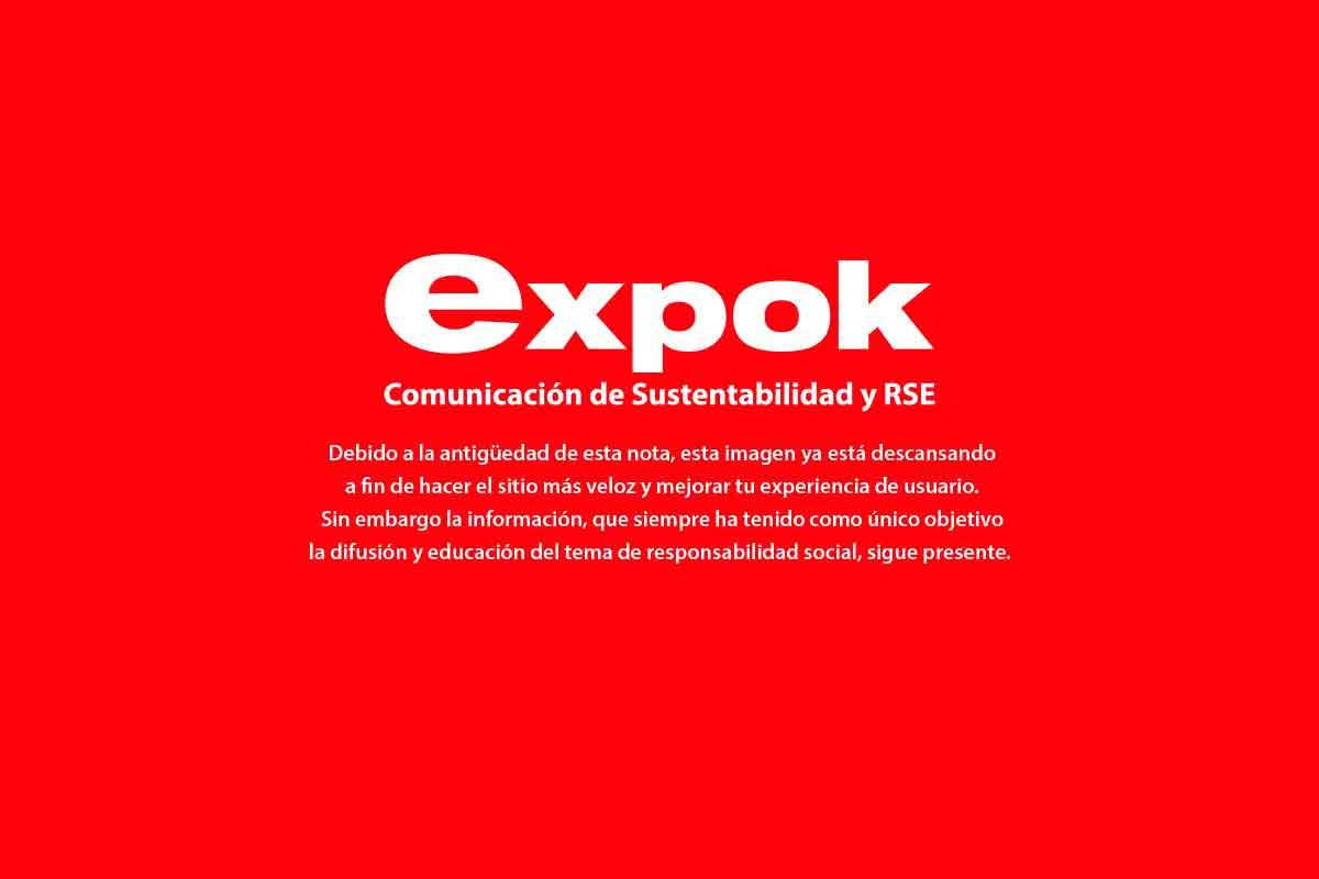 laudia Robles, durante la exposición de la Red Integrarse referente a los ODS 2030 (Foto: Especial)