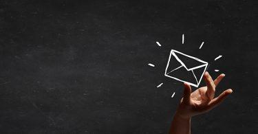 Newsletter sustentable
