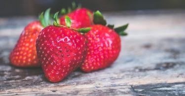 Empresas que trabajan por la nutrición, las mejores 20