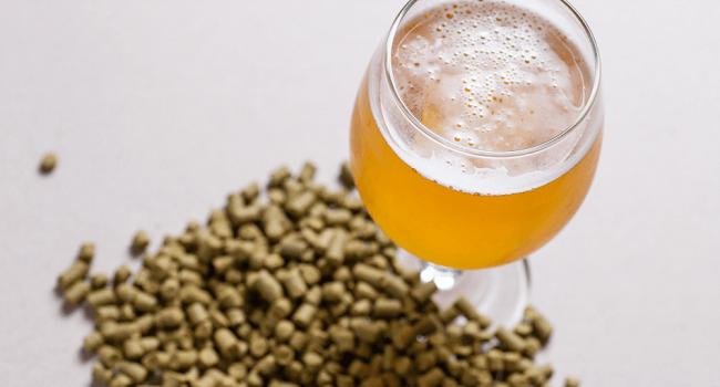 ¿Qué sigue para la cerveza sustentable de Ontario?