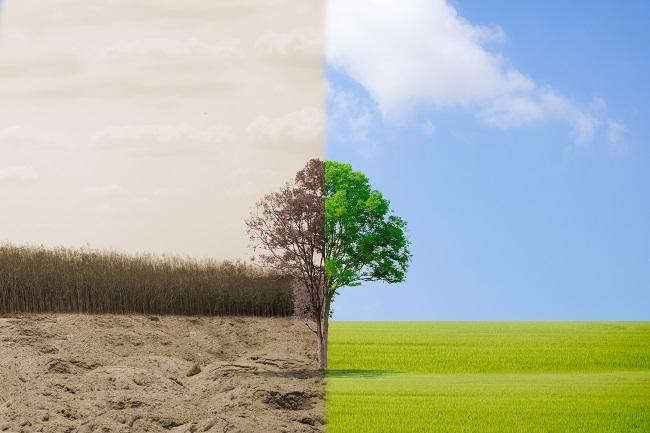 5 tendencias de impacto social para 2018