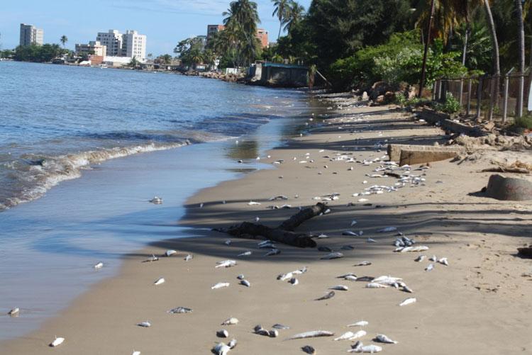 Las 10 playas más contaminadas de México