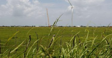 Empresas que buscan funcionar 100% con renovables