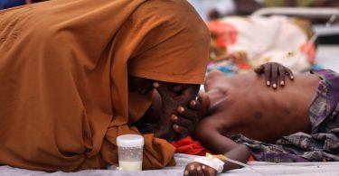 ¿Es el cambio climático culpable del incremento del hambre?
