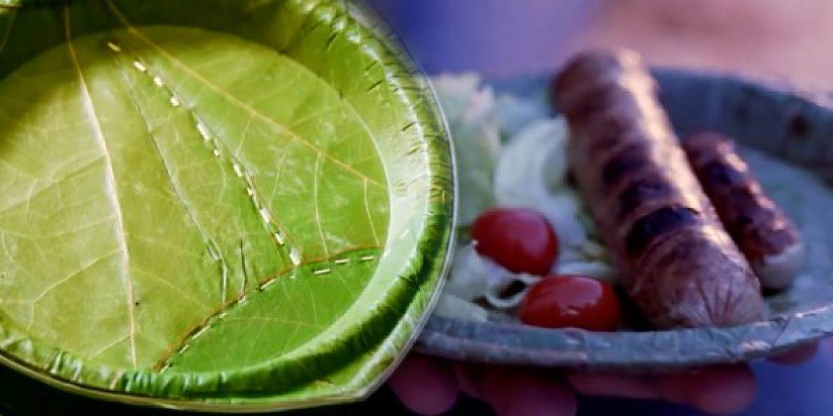 Platos desechables hechos de hojas de árboles