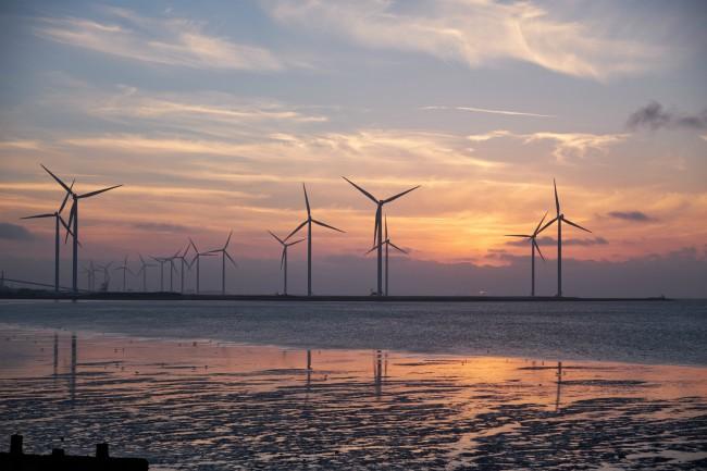 El estado de la sustentabilidad 2018