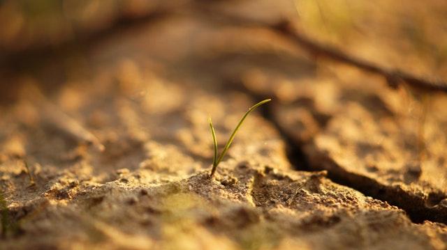 Escasez de agua afecta al 40% de la población mundial