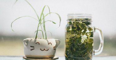 Por qué tu marca necesita productos sustentables
