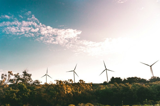 La revolucion de la sustentabilidad es un hecho segun Gore
