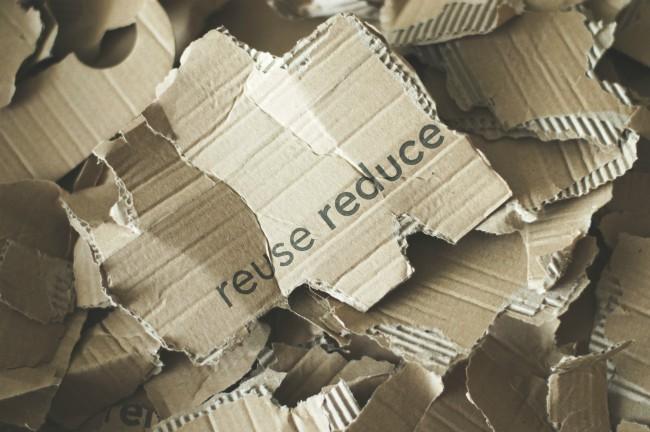 tips de medio ambiente, fundacion gigante, grupo gigante, dia mundial del medio ambiente, onu, ods, rse de gigante, responsabilidad social de gigante, tips dia mundial del medio ambiente