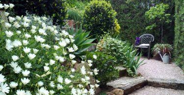 Diferencia entre un jardín y un jardín sustentable