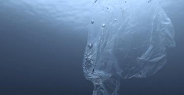 Las tarjetas American Express pronto estarán hechas de plástico reciclado del océano