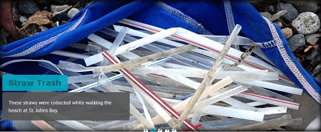 Basura de popotes de plastico en los oceanos abre ventanas de oportunidad en la sustentabilidad