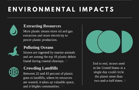 Ventanas de oportunidad en la sustentabilidad: alternativas a popotes de plástico