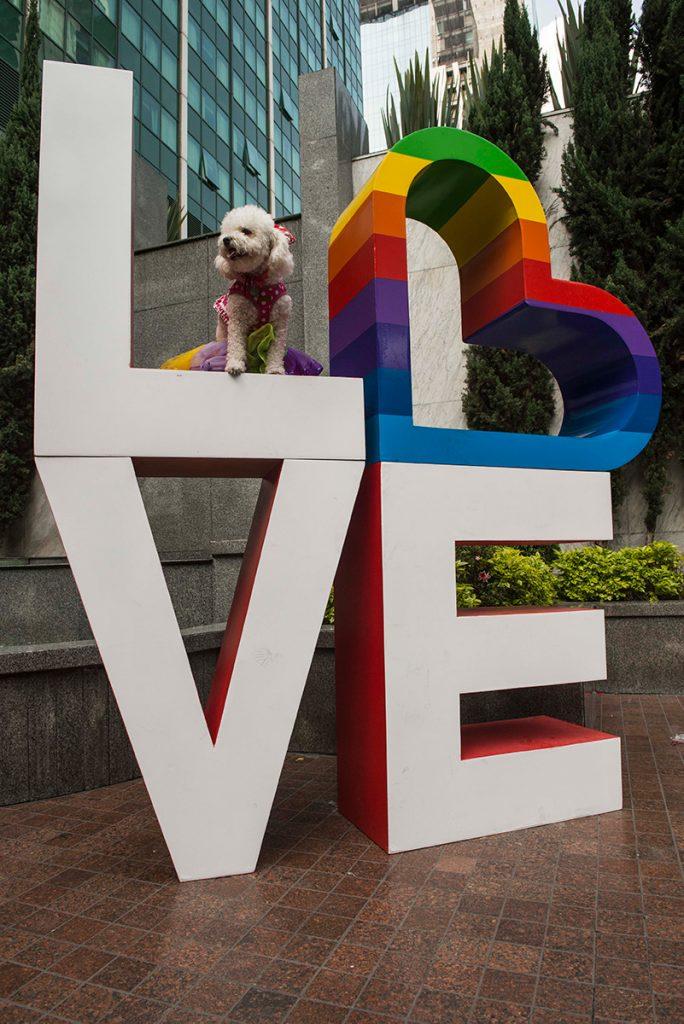 Cómo celebró Marriot en México la semana LGBT