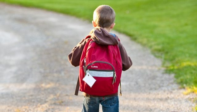 Programas escolares para protección peatonal a niños