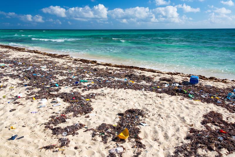 Tulum pasó de ser paraíso a desastre ecológico