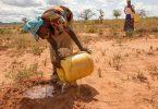 ¿Es el feminismo una solución para el cambio climático?