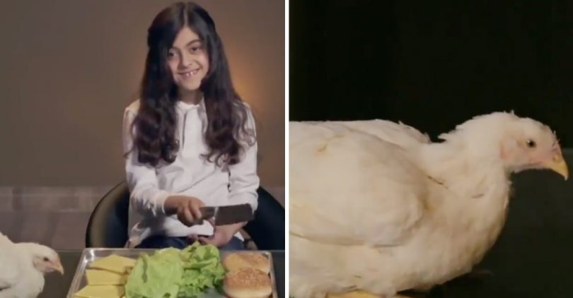 3 campañas muy polémicas de PETA