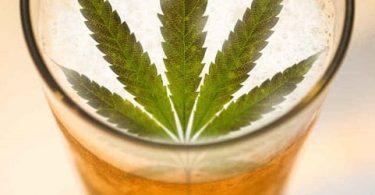 Cerveza con marihuana un proyecto de Constellation Brands