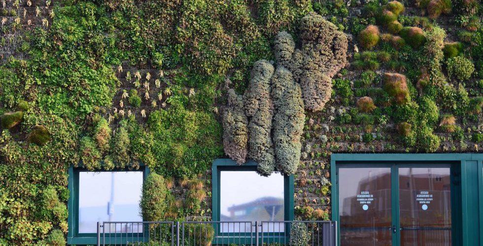 Jardines verticales que amarás