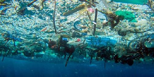 Resultado de imagen para contaminación mares