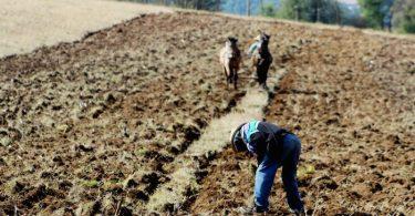 Recursos naturales para un año: Los agotamos antes de tiempo