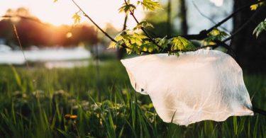 kellogg eliminara el plastico, kellogg, rse de kellogg, responsabilidad social de kellogg, sustentabilidad de kellogg, contaminacion por plastico, problema del plastico, cultura de reciclaje, reciclaje en kellogg