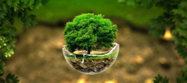 ¿Qué es la sustentabilidad como estrategia de marketing?