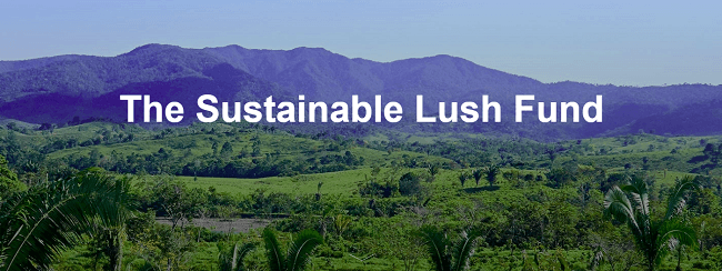 Que es SLush, parte de la RSE de Lush en la cadena de valor
