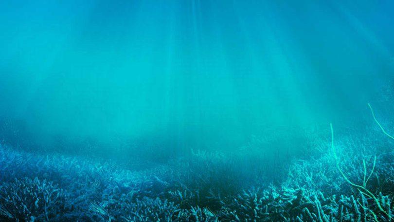 El calor por efecto invernadero está en los océanos