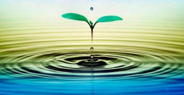 ¿Cuánta agua usas en un día?