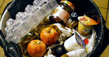 Alimentos de consumo humano desperdiciados