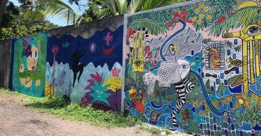 10 fundaciones en México comunicando en Instagram