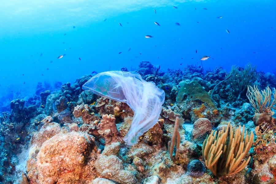 Cómo SC Johnson está reduciendo el plástico en el océano