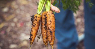 Encuentros de tecnología que impulsan la agricultura