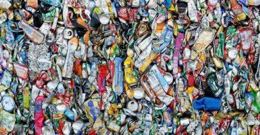La basura es un negocio para Green Love