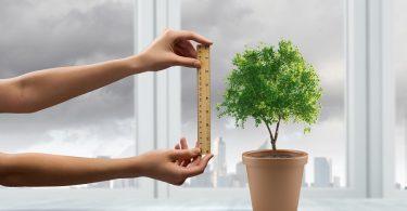 Medir las metas de sustentabilidad para 2020
