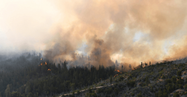 incendios causa del cambio climatico