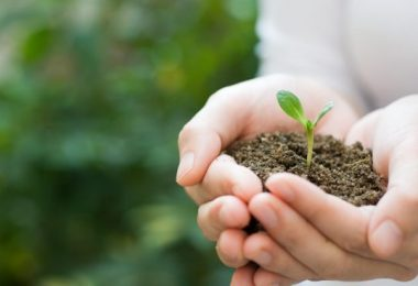Activismo ecologista para que nadie huya a otro planeta