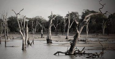 El agua escasea, pero la lluvia es más intensa ¿por qué