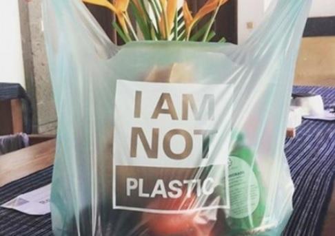 Sustituto de plástico