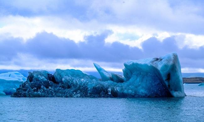 detener el cambio climático
