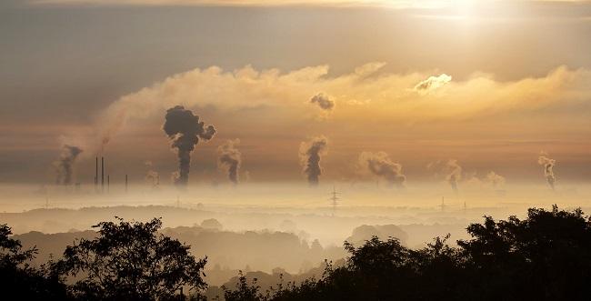 7 ideas audaces para detener al cambio climático - capturar exceso de carbono