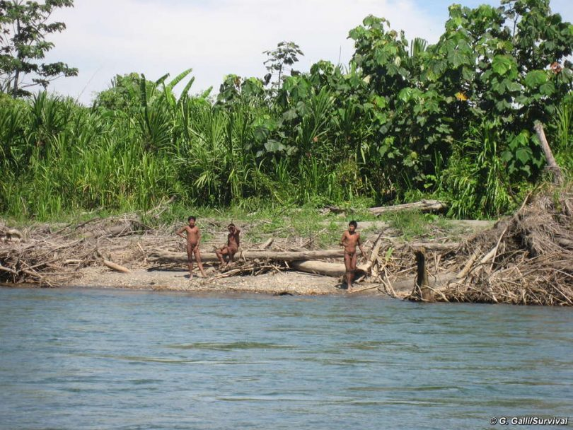 Más de cien tribus no tienen contacto con la sociedad