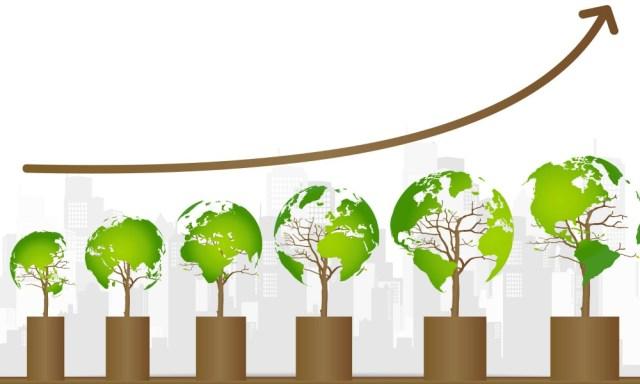 ¿Cómo influye el equipo en el desarrollo de la sustentabilidad como cultura corporativa?
