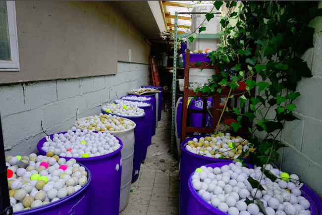 Eliminaron 39,602 bolas de golf de ambientes intermareales y cerca de la costa cerca de Carmel, California.
