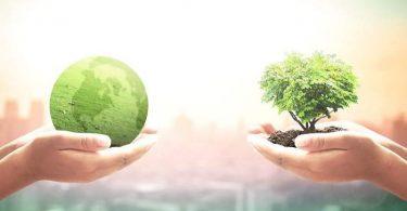 El mundo es más verde que hace 20 años